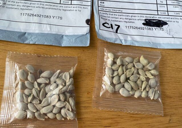 US authorities warn about mass delivery of packages of seeds from China.