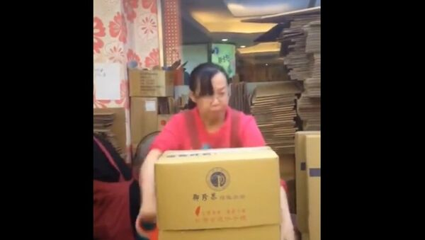 Kung Fu Packaging. Don't miss out her proud expression at the end - Sputnik Србија