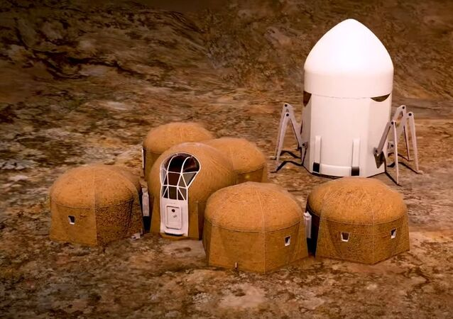 Team Zopherus - Phase 3: Level 1 of NASA's 3D-Printed Habitat Challenge