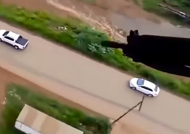 Brazilian Police Helicopter Fires at Escaping Car